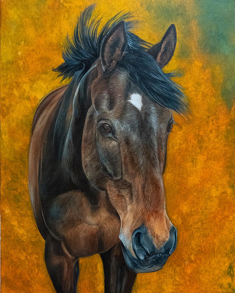 Horse Portrait- Private Commission