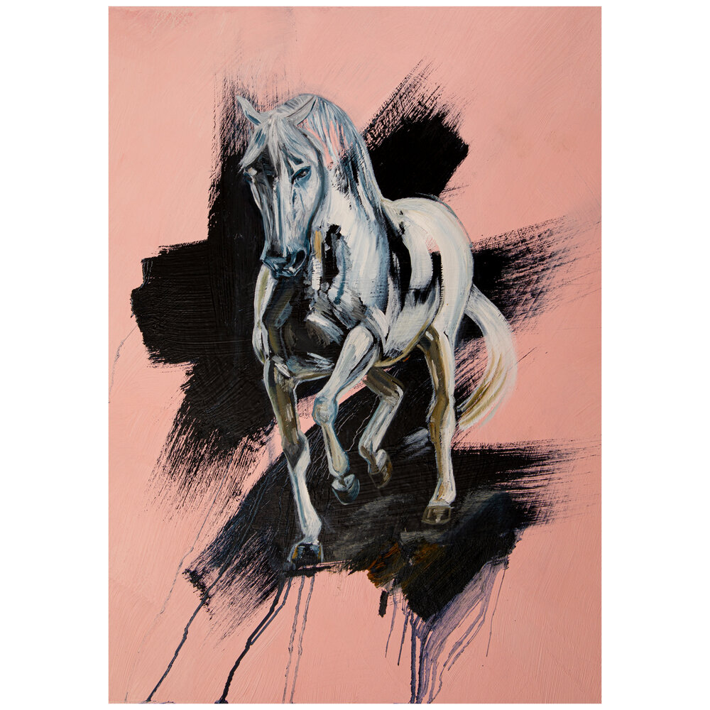 Abstract Horse Art White Horse Art Print White Horse Painting Horse Gifts For Women Horse Art Caroline Towning Horse Art Horse Paintings
