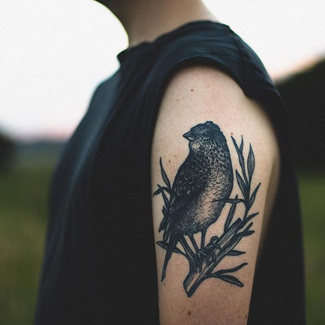 Hey guys, it's Lou! Thanks for all the incredibly nice comments on our last post! Here's a detail shot of the lark by @silveiratattooer. People say you're not supposed to have favorite tattoos, but at the moment, this is definitely my favorite ; ) Since people always ask, let me try and explain the meaning behind my new tattoos. I talked with Rafael about having the lark and the owl (opposite arm) be somewhat symmetrical because they are meant to represent the opposite and conflicting sides of myself--the lark is a newly discovered part of my personality, that loves waking up early, going for a morning walk, working hard all day, and then going to bed when the sun sets. The owl is really who I've been most of my life, staying up late, sleeping in whenever possible, it's definitely more natural to me, but, since living with Dana (who is obviously 100% lark) I've come to really enjoy a different biorhythm. Anyways, the idea was to try and have the two different extremes on each arm, so that I could try and find a balance somewhere in the middle : ) . . #wildweroam #inkstagram #blackworkerssubmission #darkartists #tattoo #taot #inked #inkedmen #veganink