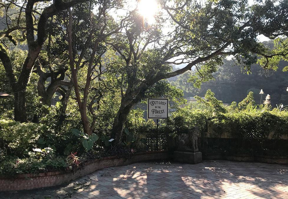 OPEN NATURE - 外雙溪森林莊園
