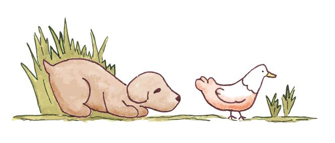 dogandchicken