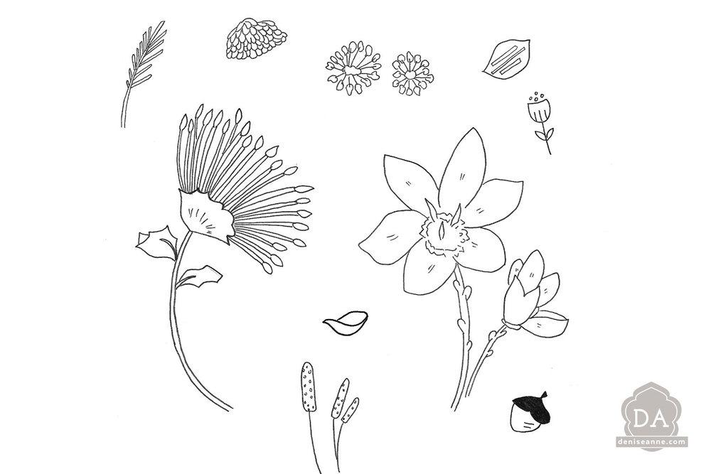 scanned-sketched-illustrations