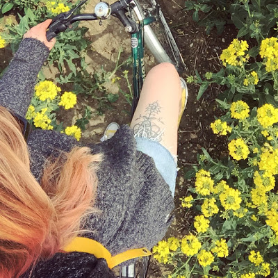 snapshot from a bike ride last summer to a yellow field in Horningsea village