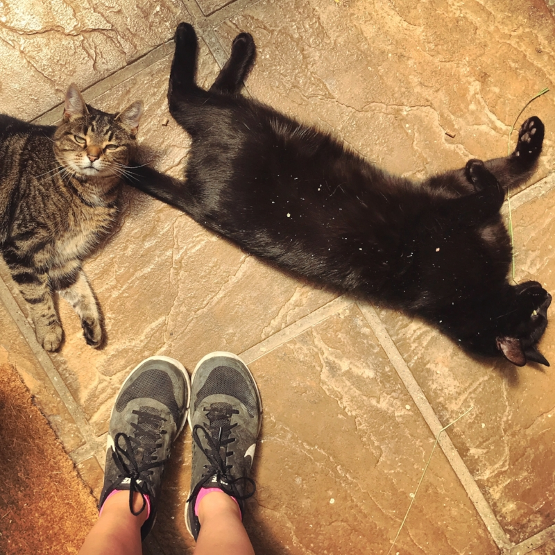 These guys sum up all the sweaty post-run feels 😅