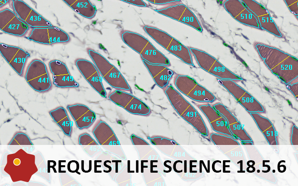 life-science-request-18-5-6.png