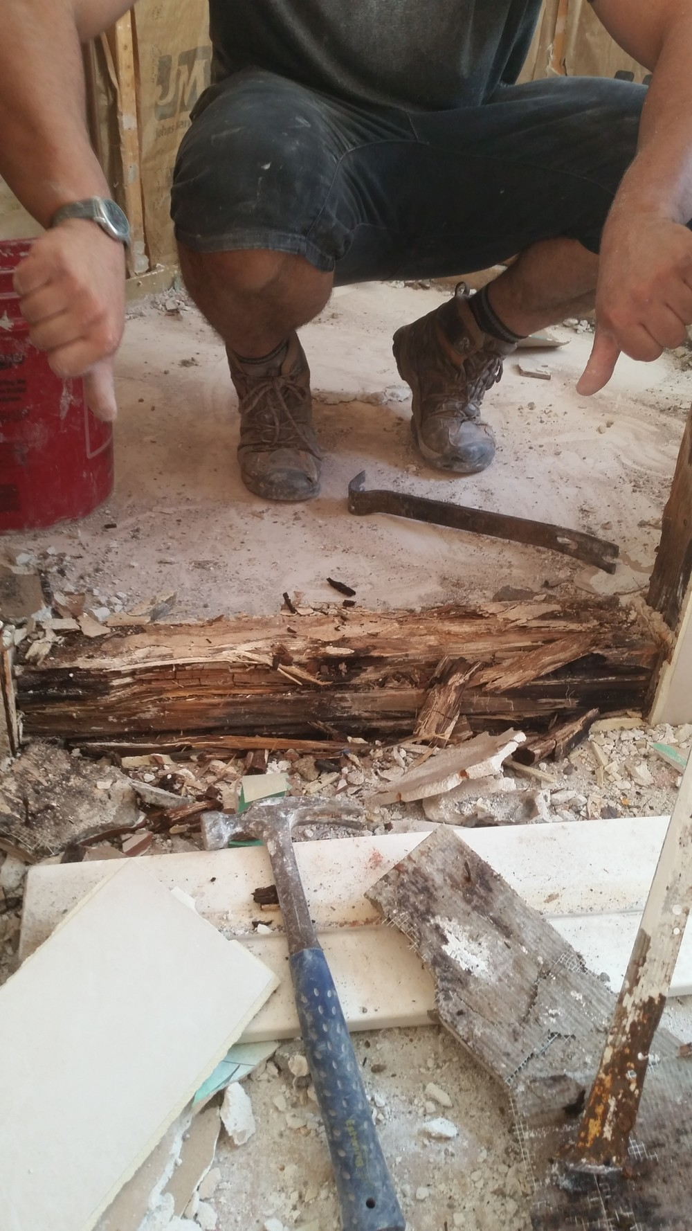 """This is what happens to your house when someone builds your shower incorrectly. Ben gives that """"TWO THUMBS DOWN!"""" Many builders still use wood for their curb, which is a food source for mold and bacteria if not water proofed correctly."""