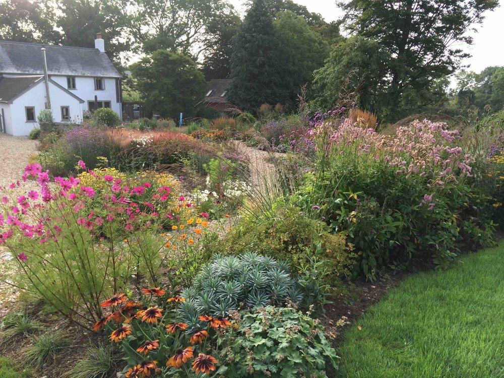 The garden at Rocombe Farmhouse