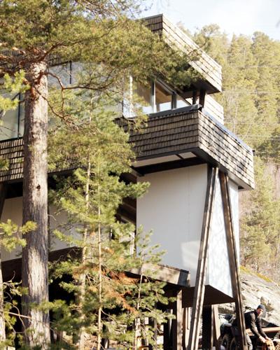 Hytte i skogen 2.JPG
