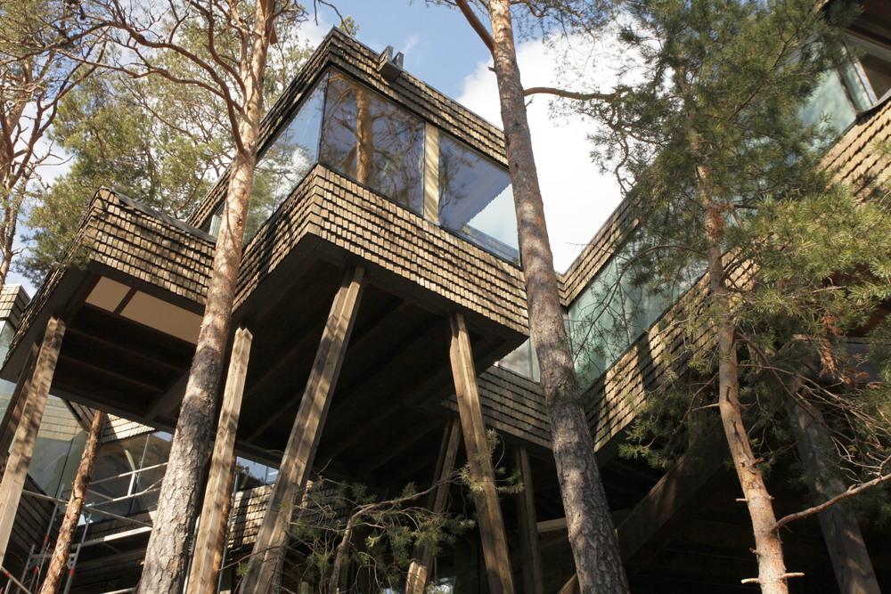 Hytte i skogen 3.JPG