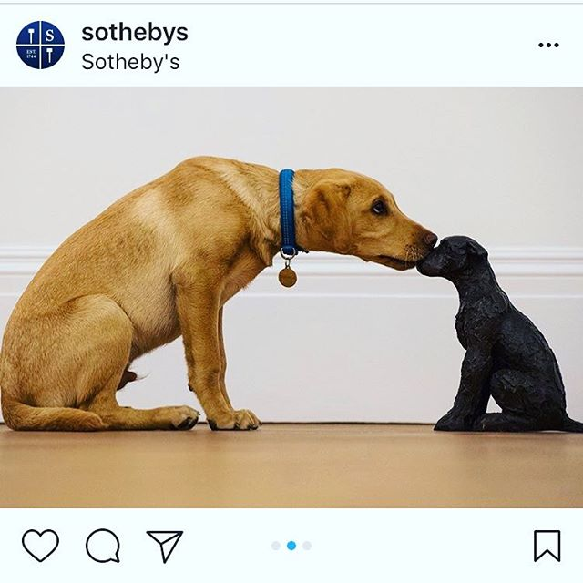Over here at dOGUMENTA HQ we were so excited when @sothebys posted this amazing pic of a pup exploring a bronze by Dame Elisabeth Frink that we thought #artdogsaturday couldn't come soon enough! 🐾 What's your pup seeing in the galleries today? #artdog #culturehound . .  Puppy love: This morning in our #London galleries, five month old Astor visited our Modern British Art Week #exhibition and came face to face with Dame Elisabeth #Frink's miniature #bronze #sculpture of a #dog from 1992. Stop by over the weekend to see the petite pup for yourself (open 12 – 5pm, Saturday and Sunday)! #SothebysModBrit #DogsofInstagram #DogsinArt #ElisabethFrink #ModernBritishArt