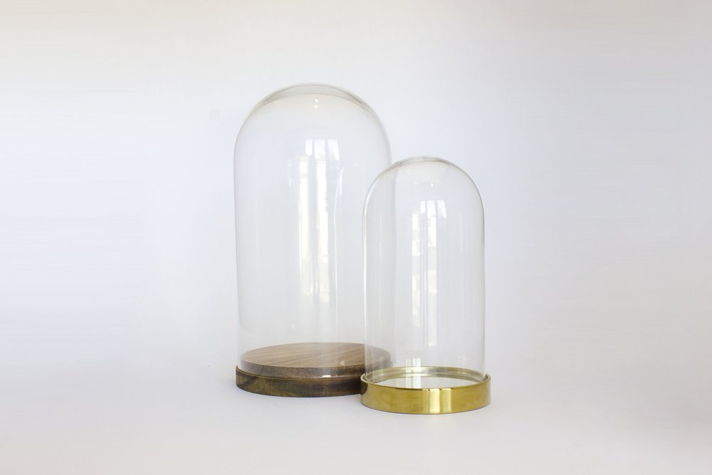 GLASS DOME COLLECTION
