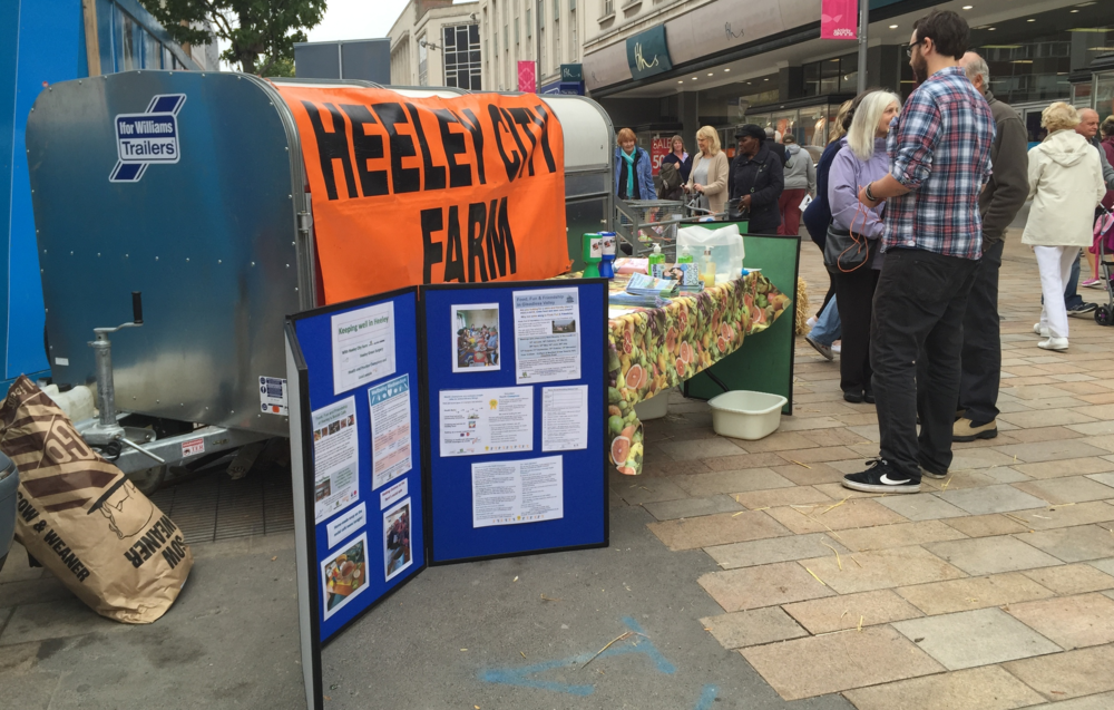 The Valerie Foundation and Heeley City Farm during International Older Persons Day Celebrations in Sheffield City Centre. Our stall funded by Postcode Community Trust