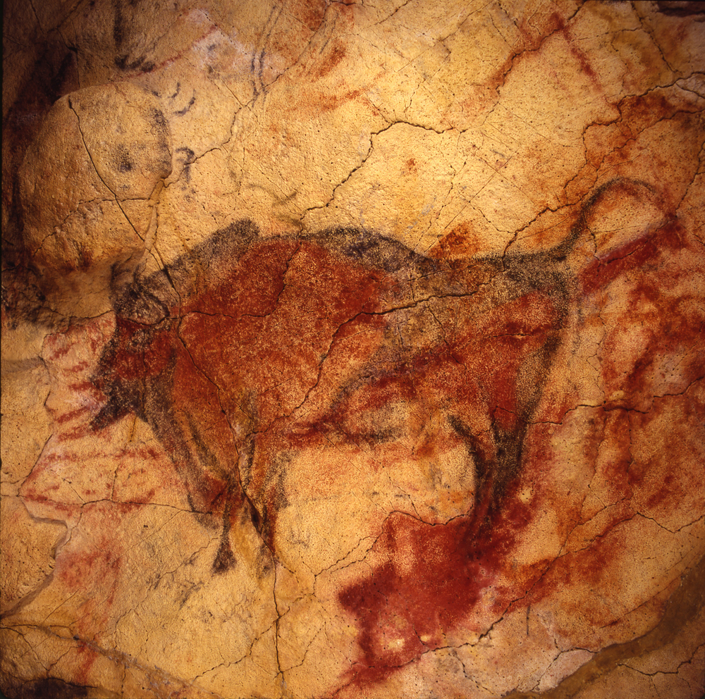 CRIPTA DE LOS BISONTES    Cueva de Altamira, Museo y Centro de Investigación de Altamira
