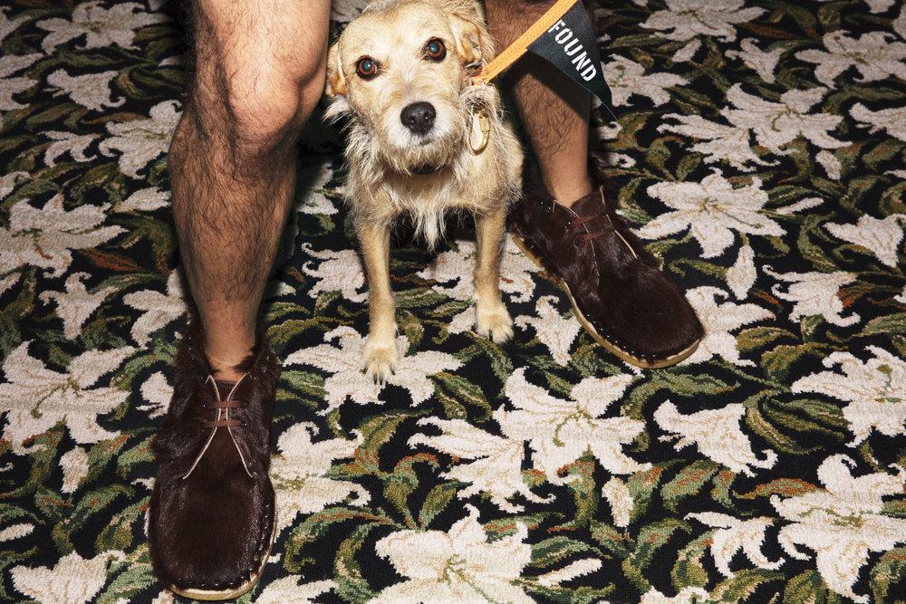 Igor viste zapatos de  PRADA .