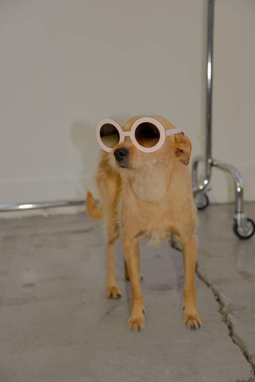 Gafas de sol de  NINA MUR  para  MALABABA .