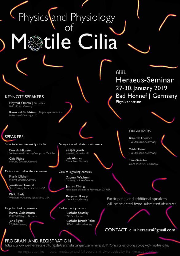 Motile Cilia flyer.png
