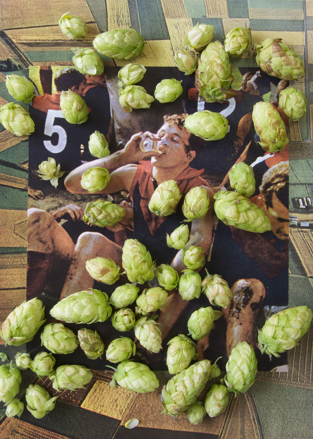 Ultrachrome print of collage and hops SOLD