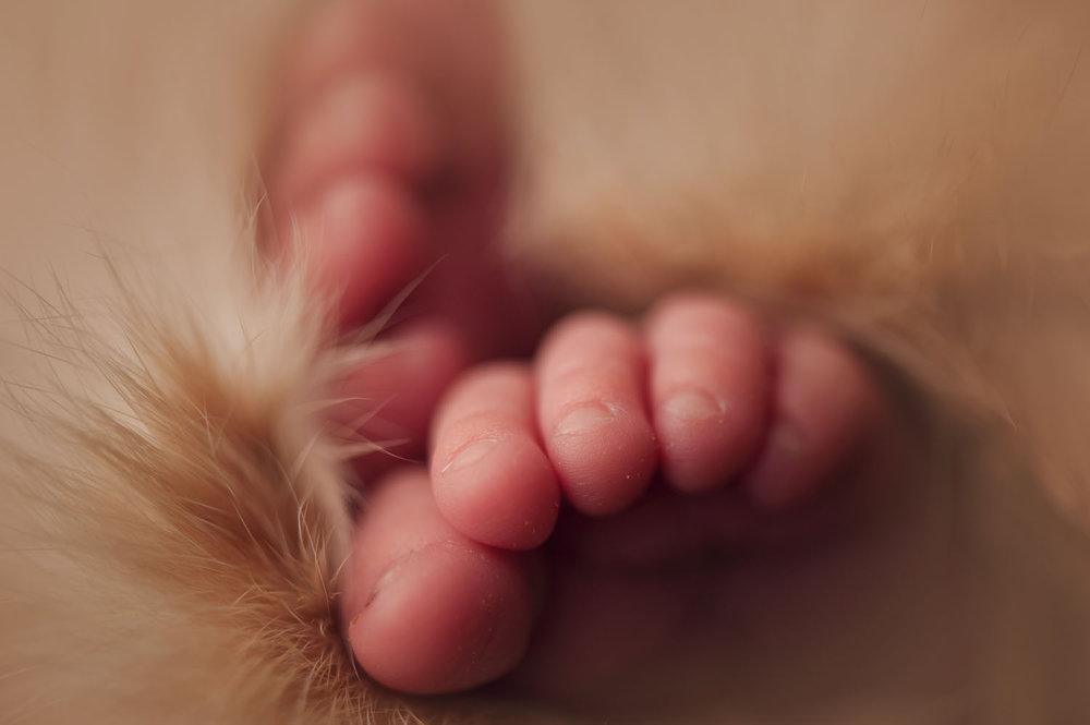 newbornphotography_11_1.jpg