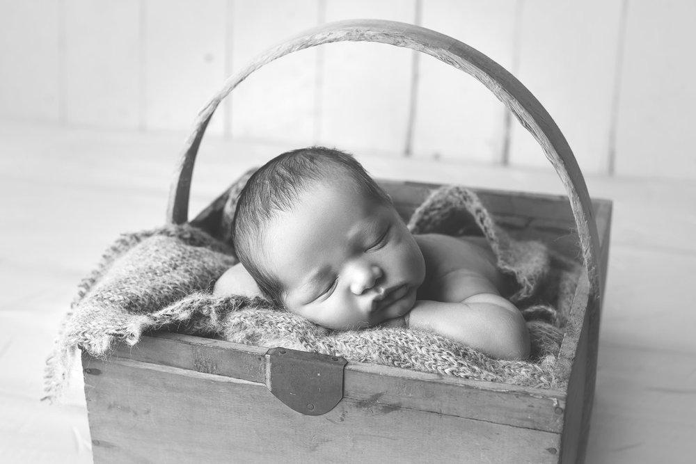 babyphotographyworkshops07.jpg