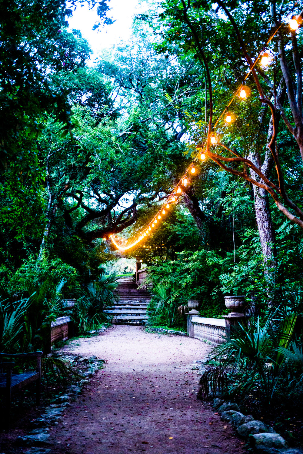 The path to art school,tucked under trees and strung lights.