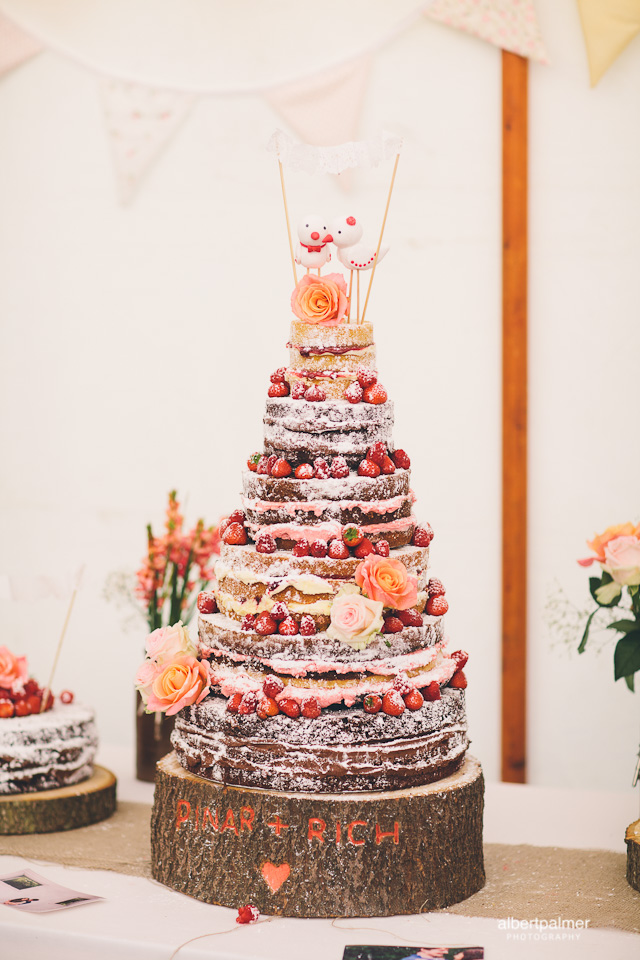 Rustic naked cake with bird toppers