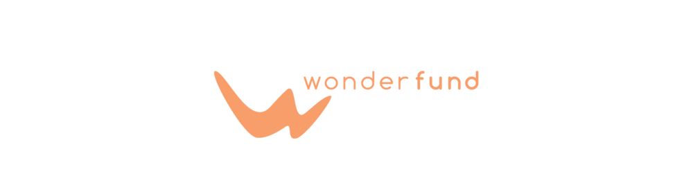 Portfolio_WebDesign_Wonderfund_Logo.png