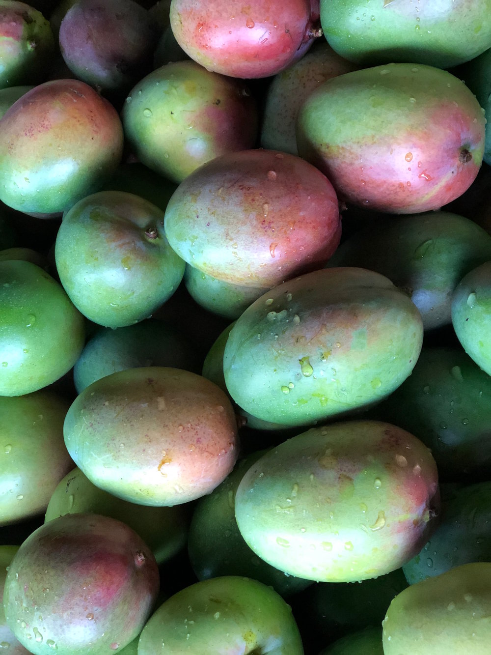 green mango.jpeg