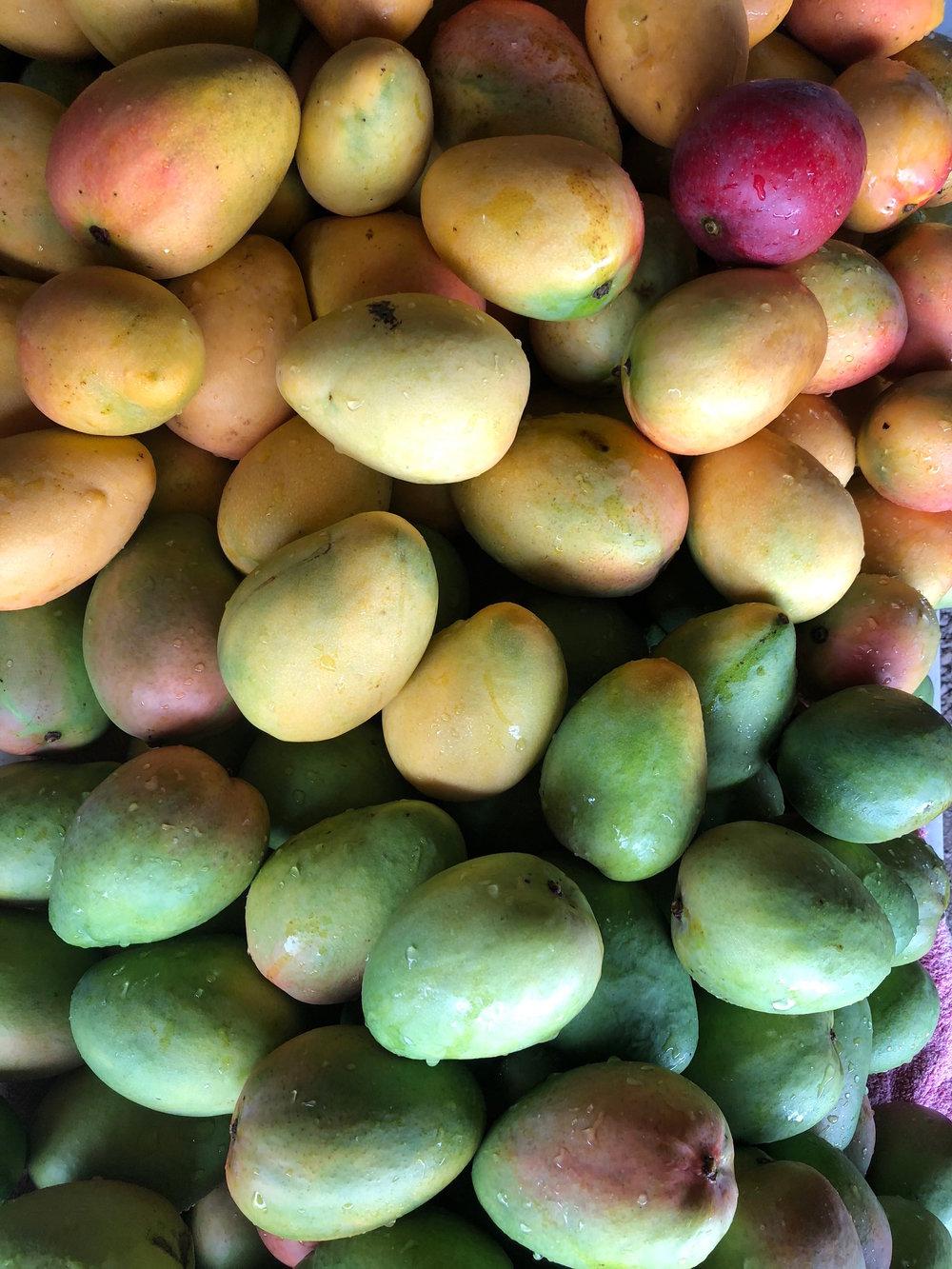 pretty mango.jpeg