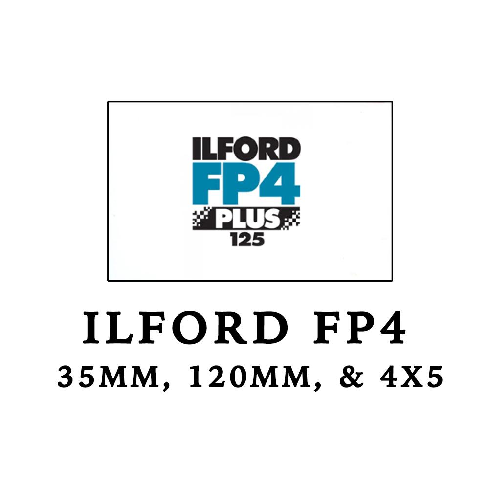 FP4.jpg