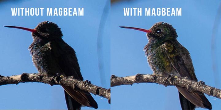 MAGBEAN.jpg