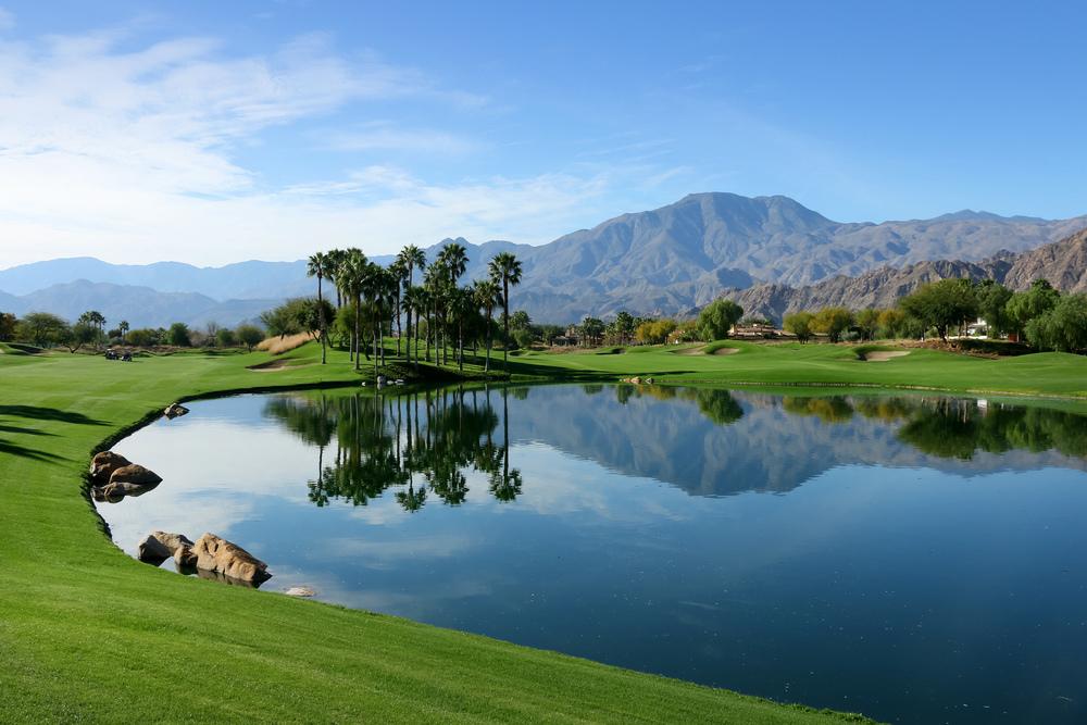 Palm Springs Realtor