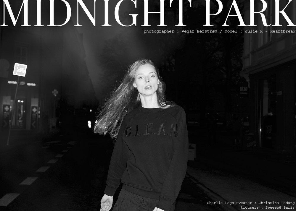 VH_Midnight Park_01 kopi.jpg