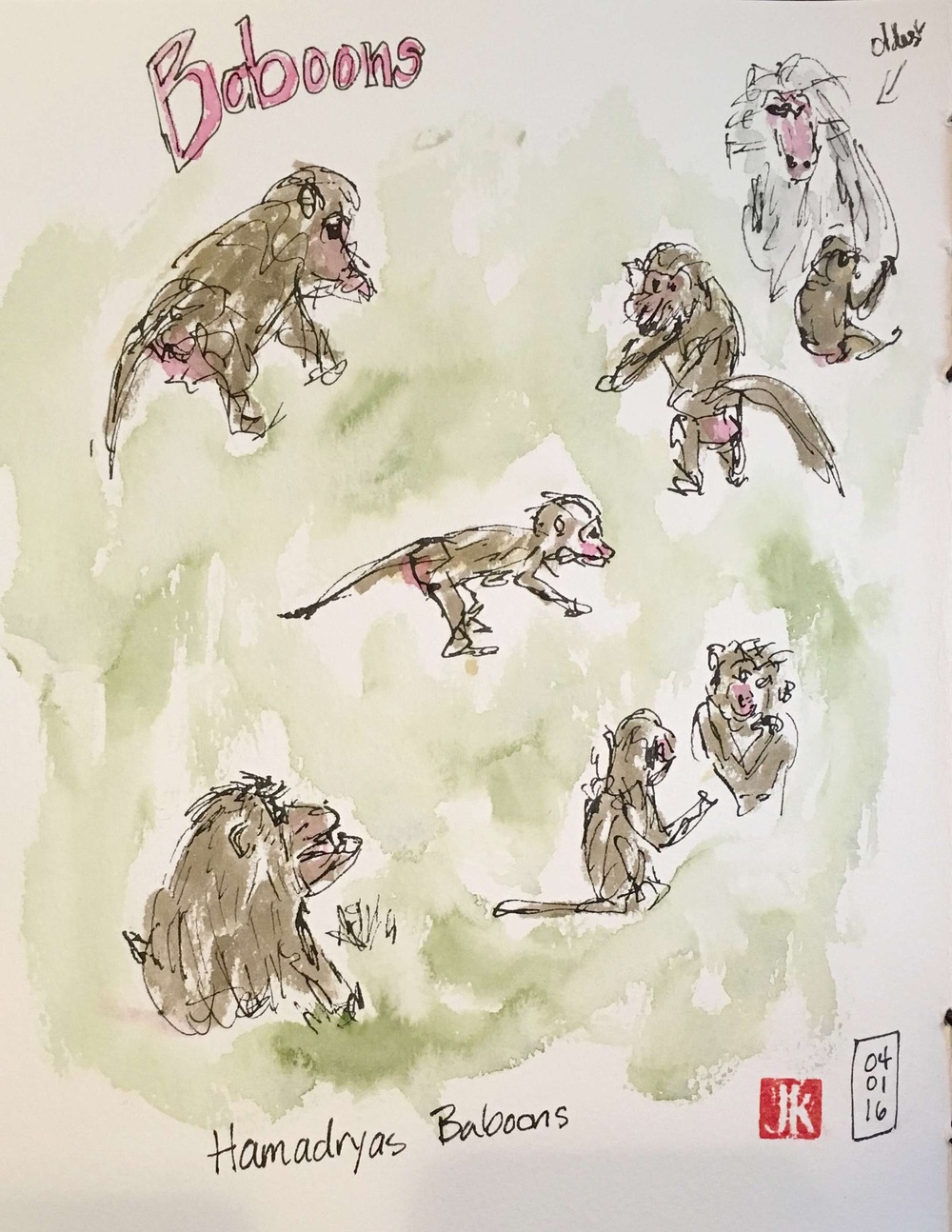 The baboons were full of playfulness.