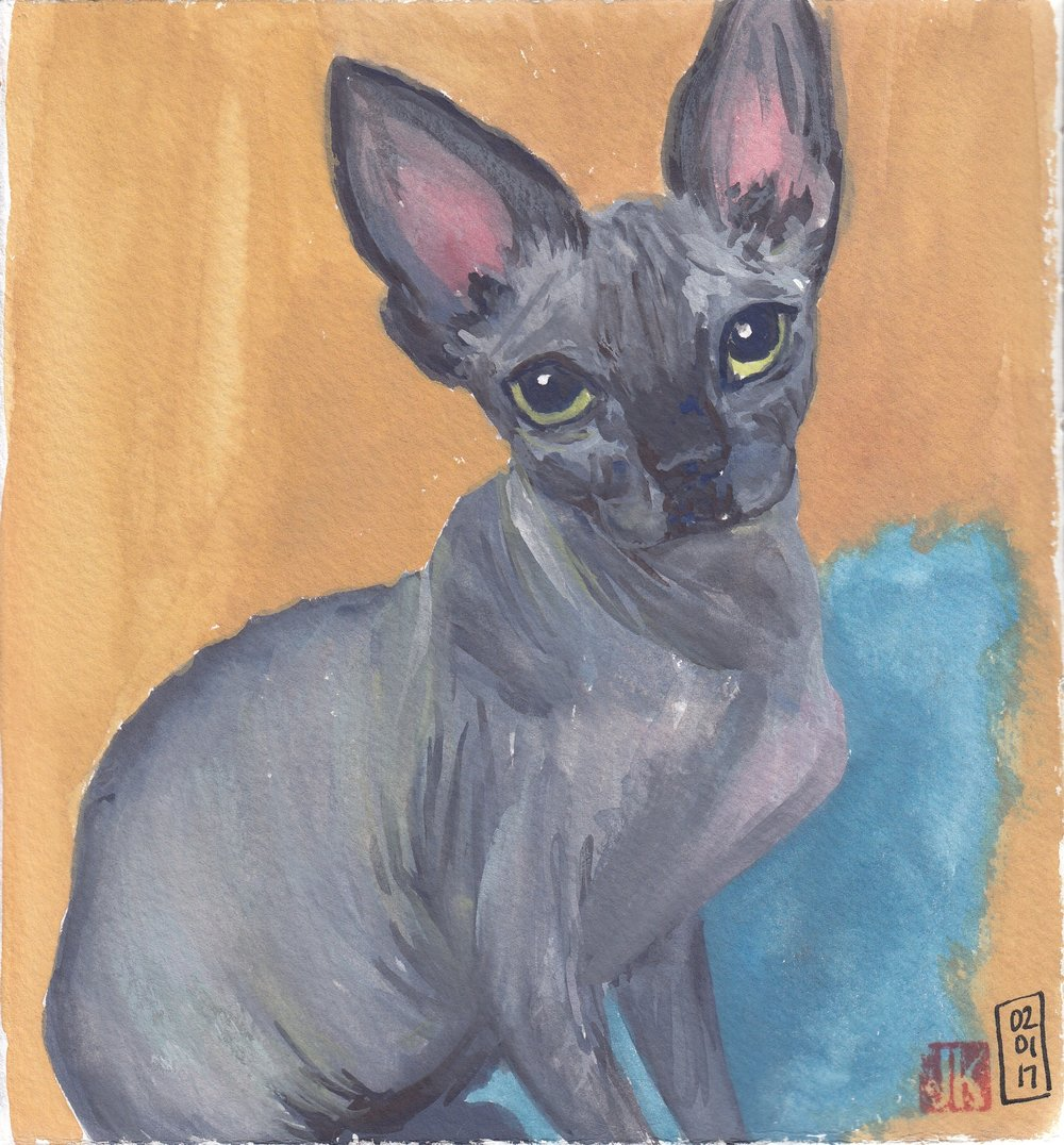 A sphynx cat inspired by Sktchy in gouache