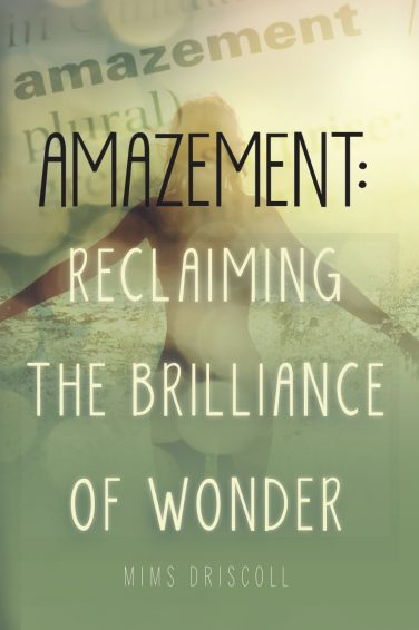 mims-driscoll-amazement-reclaiming-the-brilliance-of-wonder-mission-hills-los-angeles-conversations-podcast