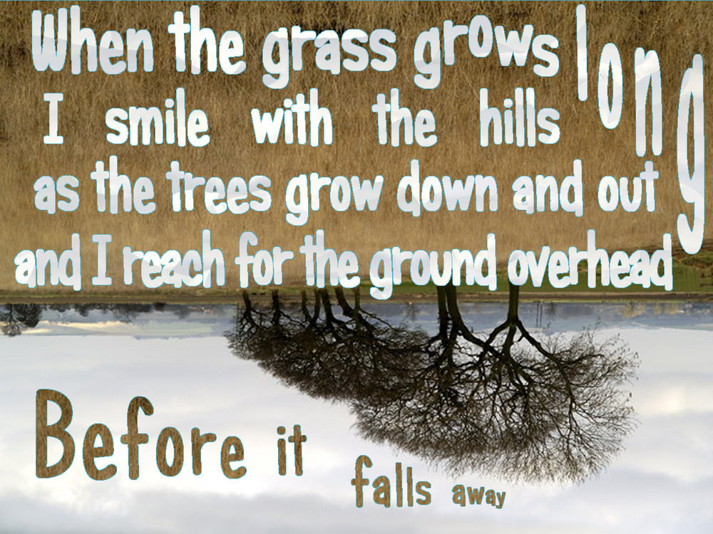 PersonOrPersons:  When the Grass Grow Long