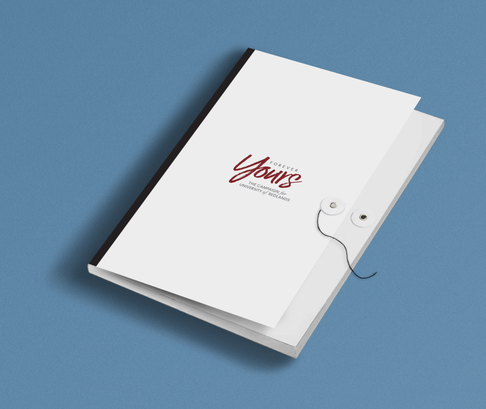 Physical campaign materials were delivered to prospective donors in a custom designed folder.