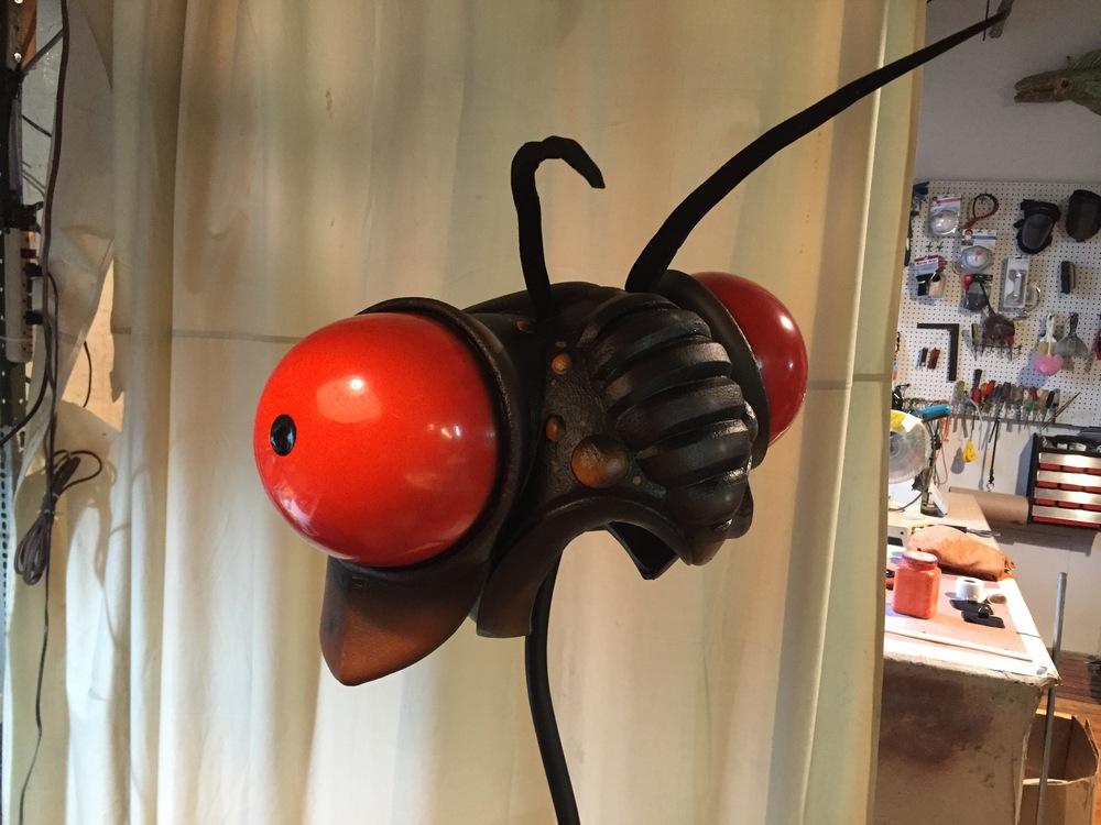 Cicada head!