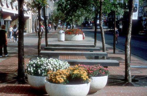 Planters, trees, and benches of Halprin's original design. (Digital Content Library, University of Minnesota).