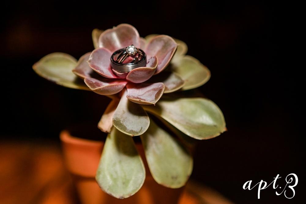 AptBPhotography_AmandaMarkBLOG-126
