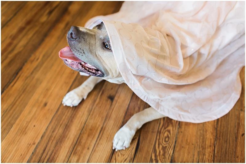 Savannah_Wedding_Photographer_Apt_B_Photo_Polka_Dot_Wedding_Dress017.JPG