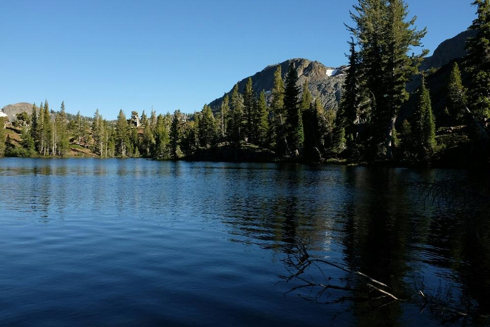 Susie Lake.