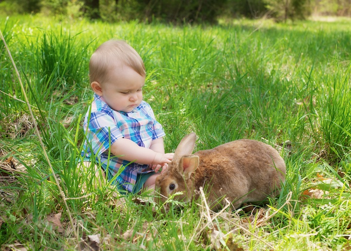 baby boy with bunny