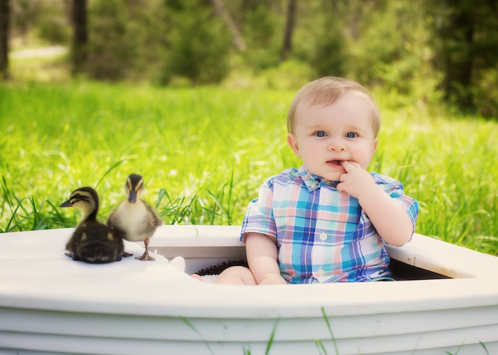 sweet baby boy with ducks