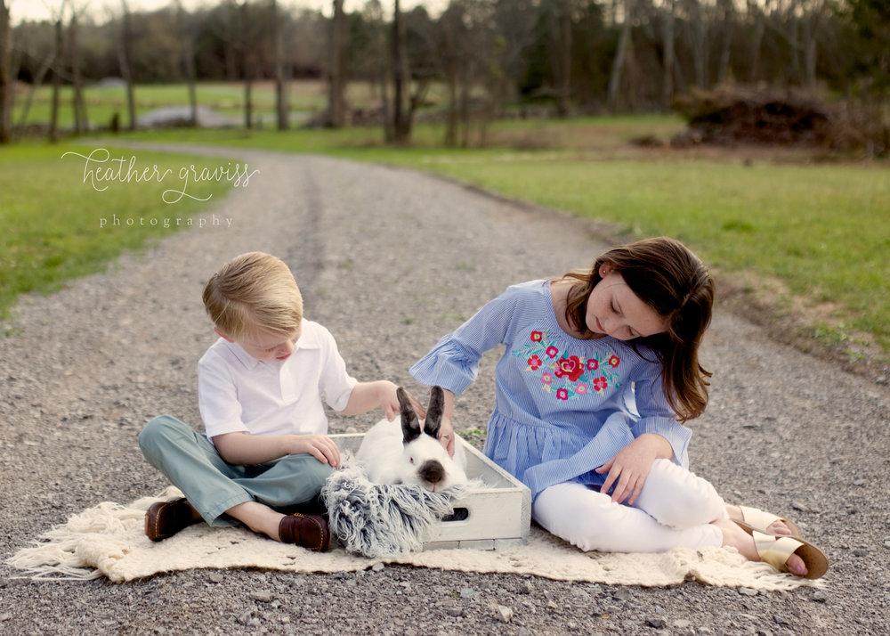 gravel-road-bunny.jpg