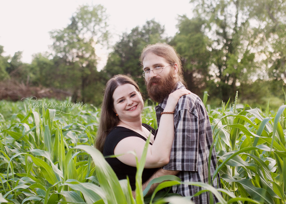 love-in-the-cornfield.jpg