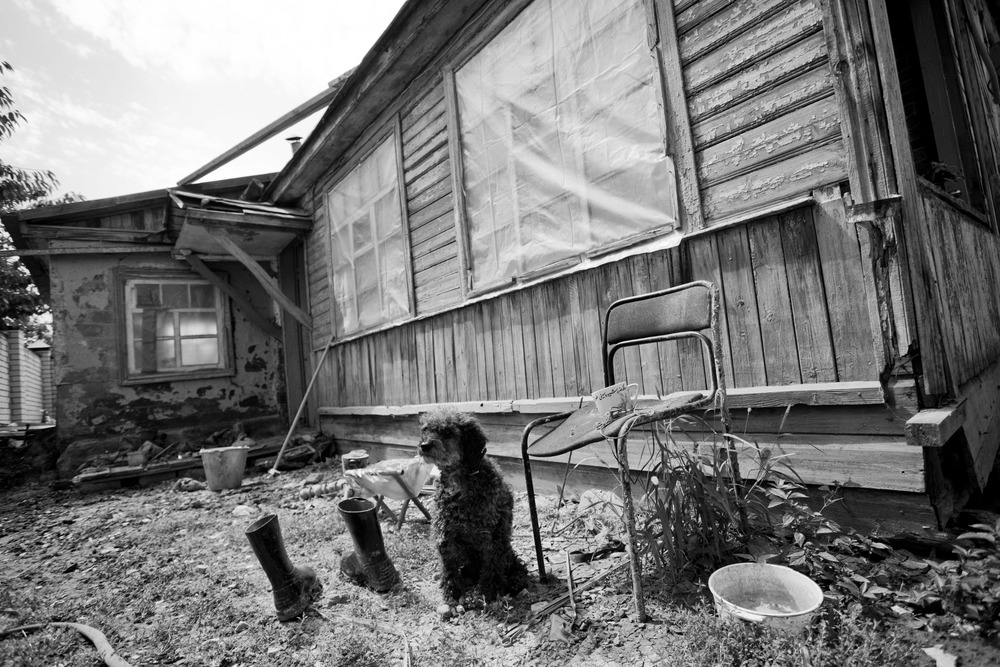 A month later, a dog waits next to an abandoned house that was damaged and left after a flood in Krymsk, Russia. August 2, 2012