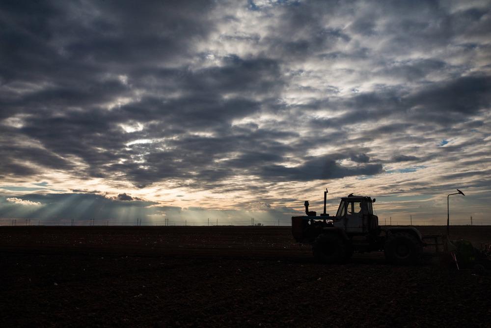 Главная негосударственная отрасль здесь - сельское хозяйство. Выращивают перец, капусту, картошку, морковь, лук, помидоры - земля дает два урожая. Еще есть консервный завод.