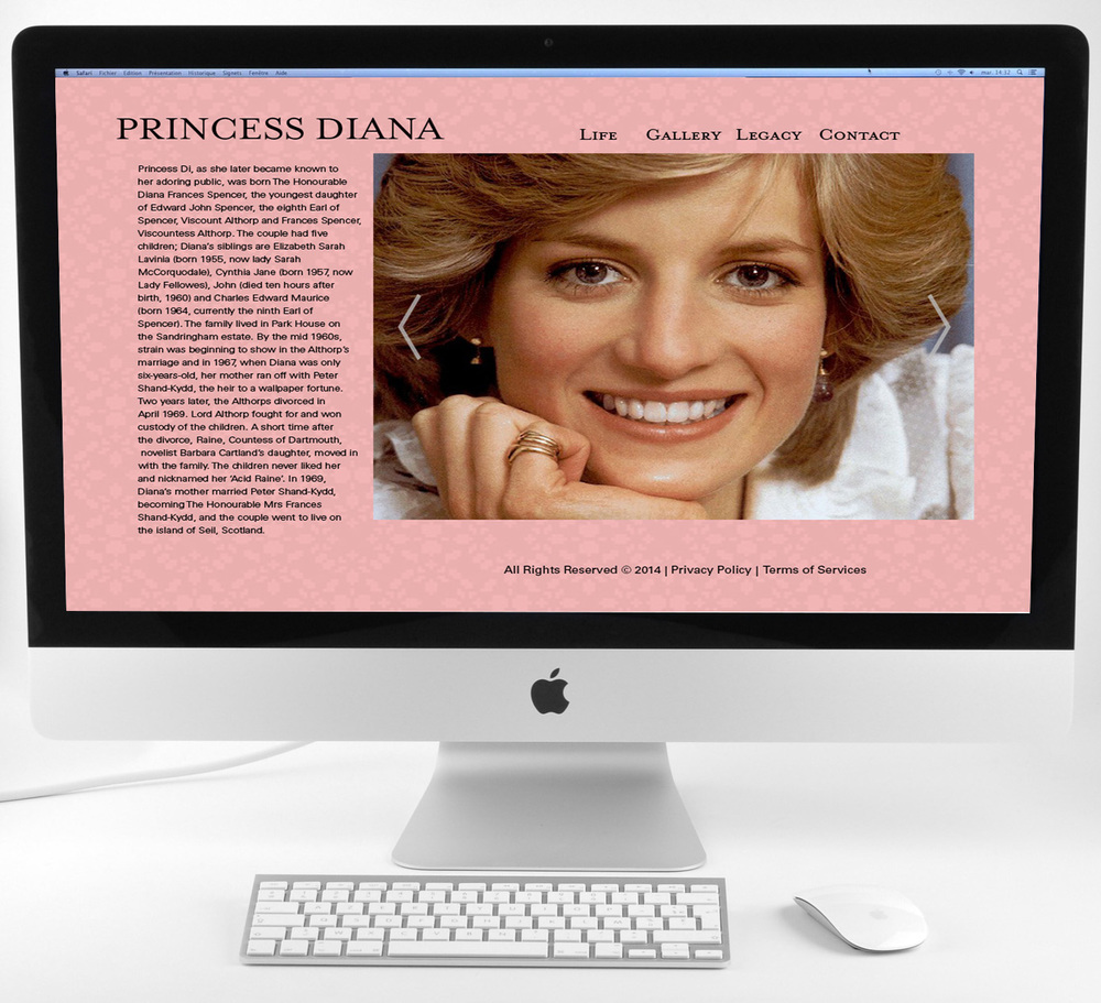Princess Diana Display.jpg