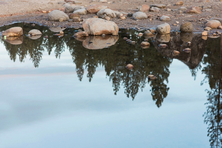 danelle-jared-truckee-donner-lake-engagement-photography-18.jpg